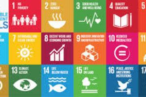 I Development goals, L'UE e il quadro di sviluppo globale post 2015