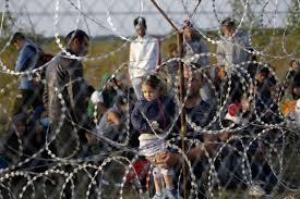 Rinchiudere i migranti nei container: la Storia dimenticata dall'Ungheria di Orban